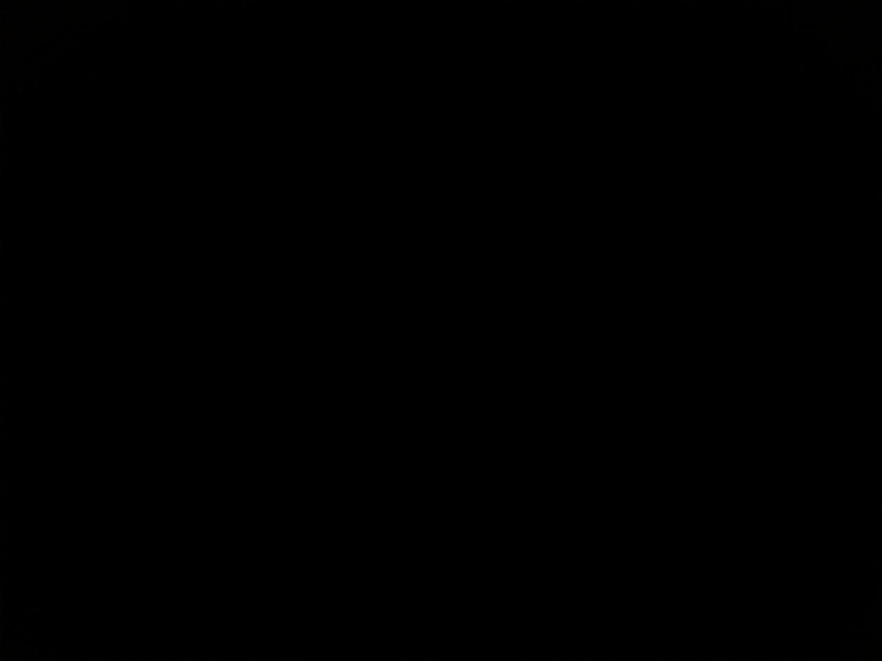 Amselnest